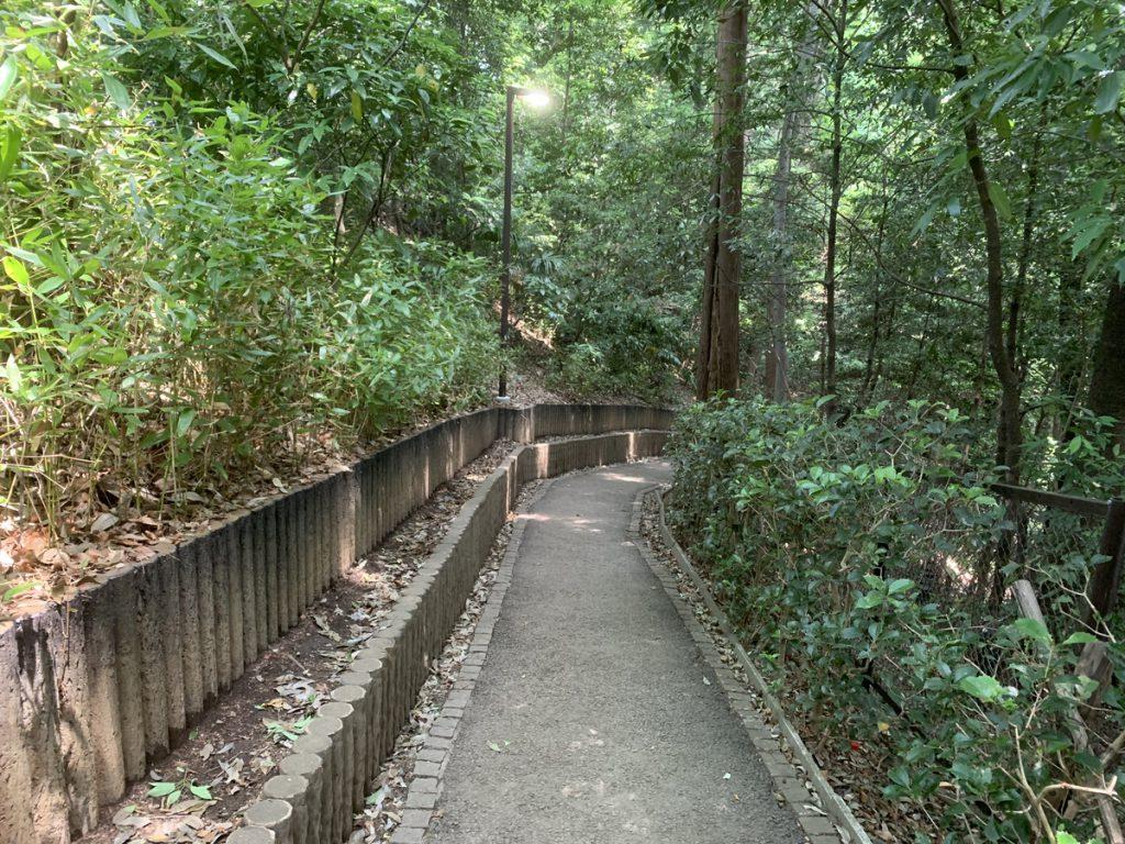 野鳥の森から真姿の池へ向かうスロープ