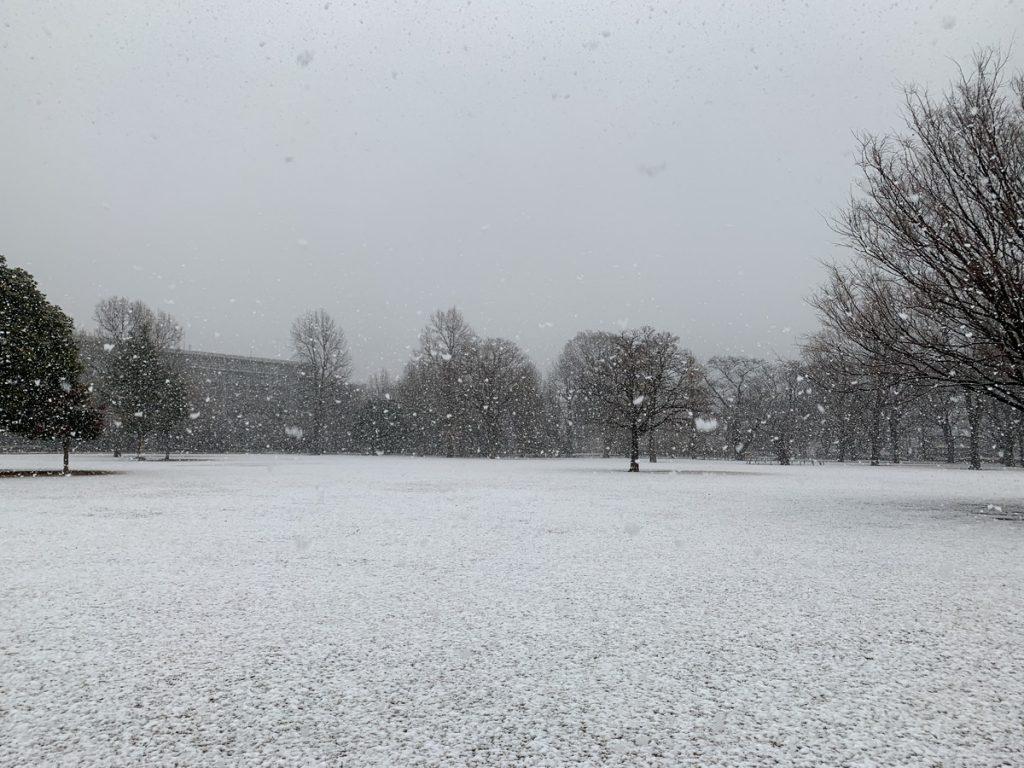 雪降る武蔵国分寺公園